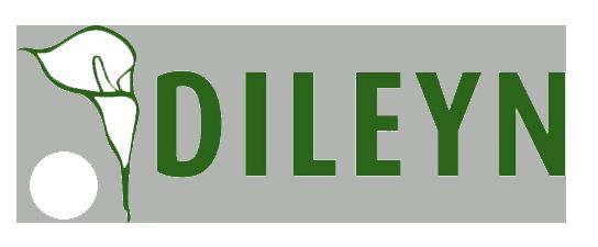 Dileyn